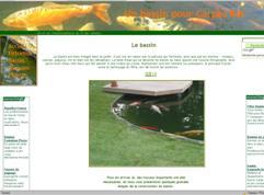bassin pour carpes koï