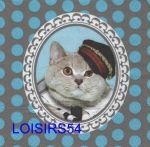 Serviette papier chat avec casquette