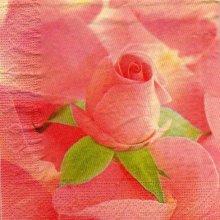 Serviette papier rose et feuilles 33 cm X 33 cm 3 plis