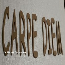 Lettre en bois decorative CARPE DIEM
