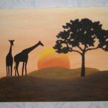 Girafes au soleil couchant