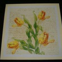 Des mots et des tulipes